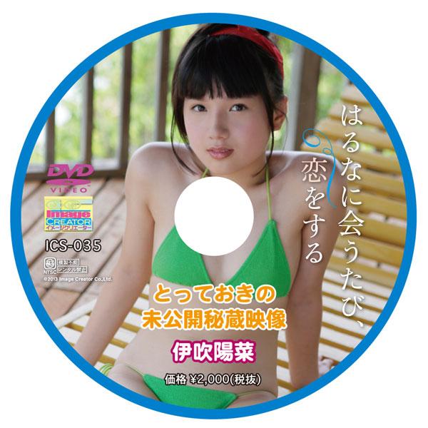 伊吹陽菜   はるなに会うたび、恋をする とっておきの未公開秘蔵映像   DVD