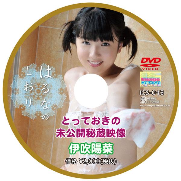 伊吹陽菜   はるなのしおり とっておきの未公開秘蔵映像   DVD