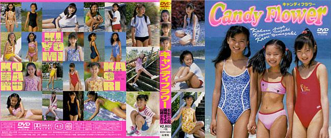 有賀小陽, 磯崎きよみ, 山崎かおり | キャンディーフラワー | DVD