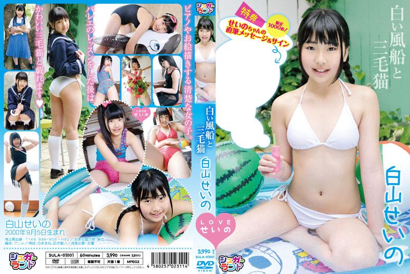 白山せいの | 白い風船と三毛猫 | DVD