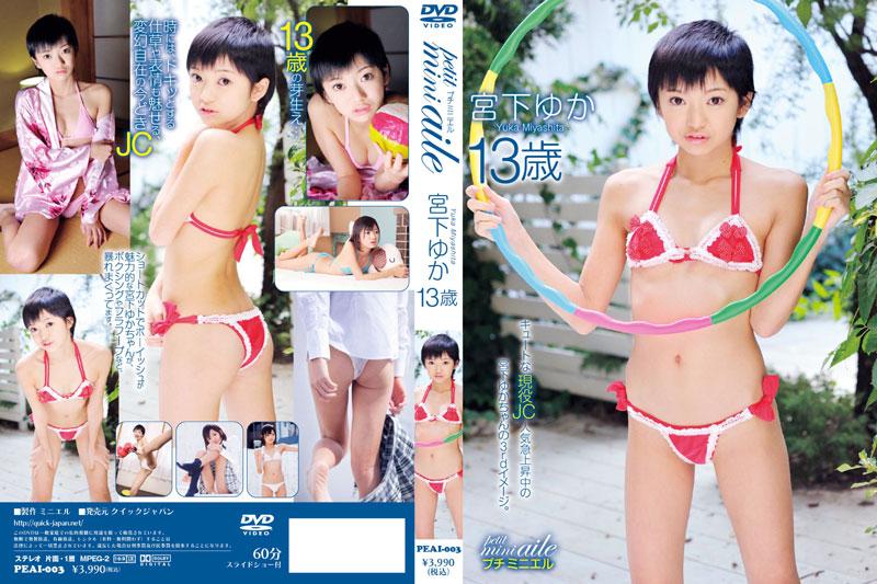 宮下ゆか   petit mini aile 2   DVD